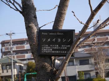 P1050139_R.JPG
